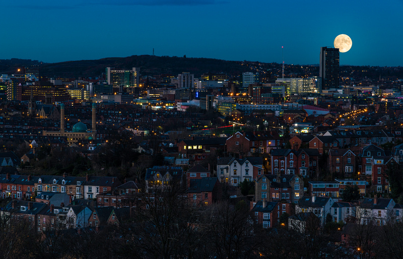 Sheffield from Meersbrook Park